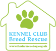 Kennel Club Breed Rescue