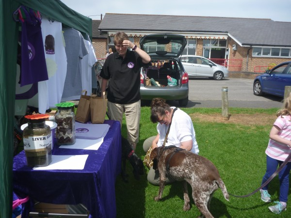 'Meet the Breed' at Central & Southern GSP Society
